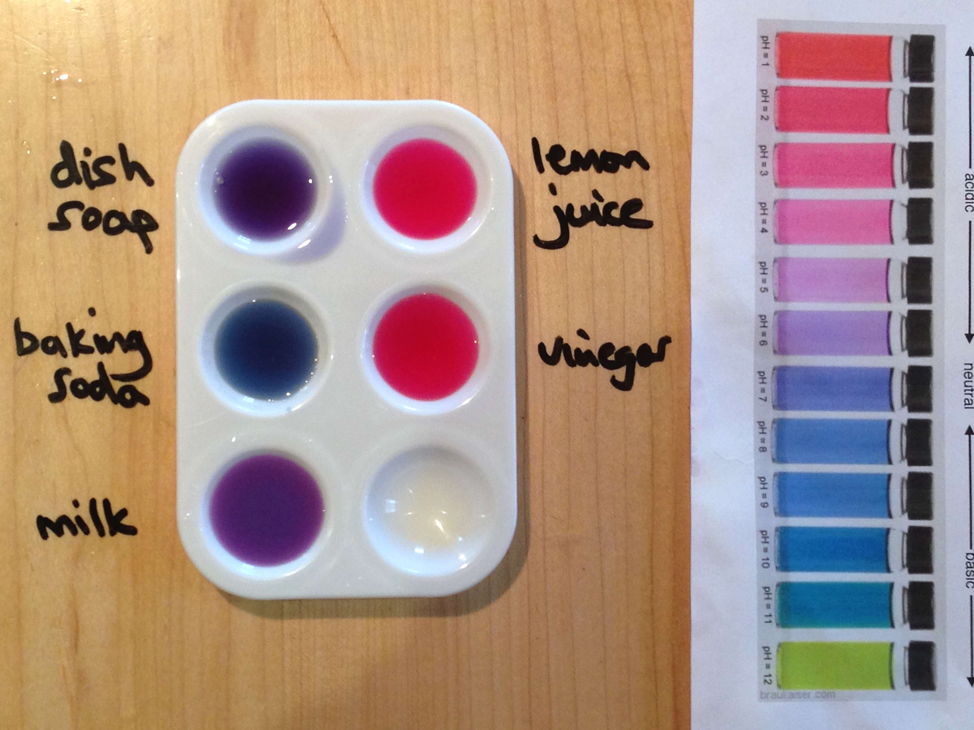 calibration of red cabbage juice indicator Methyl orange is frequently used as an indicator in acid titrations because it very clearly changes from red at a ph of 31 to orange at a ph of 44 because the change in color takes place around the ph of most acids, methyl orange is commonly used for strong acid titrations and not for base.